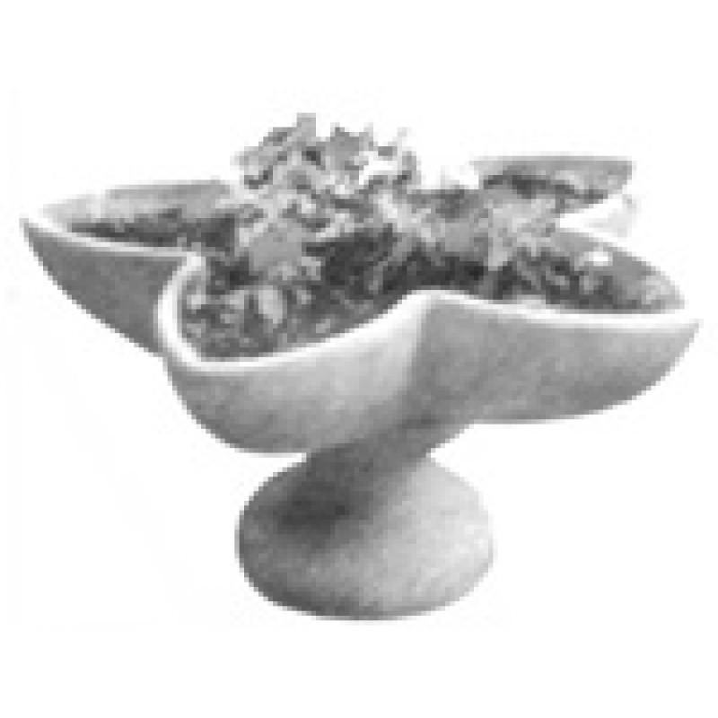 Цветочница пятилучевая (Ц1)